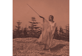 Unknown Mortal Orchestra - II - (Vinyl)