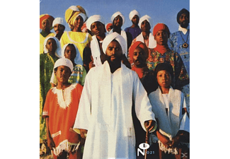 VARIOUS - Soul Messages From Dimona - (Vinyl)