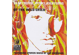 Jim Morrison & V - Electronic Proclamations Of The Wil - (CD)