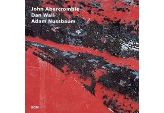 John Abercrombie - While We're Young (CD)
