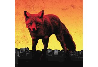 The Prodigy - The Day Is My Enemy | LP