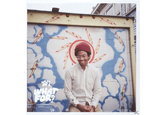 Toro Y Moi - What For? - (CD)