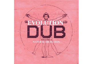 VARIOUS - The Evolution Of Dub Vol.4 (Box Set) [CD]