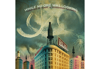 VARIOUS - While No One Was Looking: Toasting 20 Years Of Bloodshot Records - (Vinyl)
