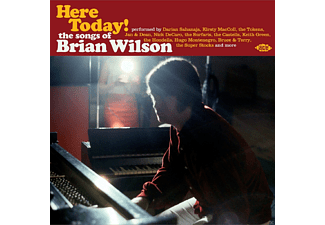 VARIOUS - Here Today! The Songs Of Brian Wilson [CD]