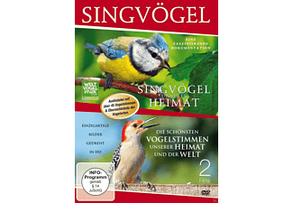 Singvögel [DVD]