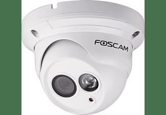 FI9853EP Buiten PoE Dome IP Camera
