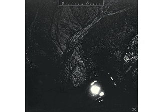 Cocteau Twins - The Pink Opaque - (LP + Download)