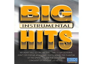 Acoustic Sound Orchestra - Big Hits Instrumental - (CD)