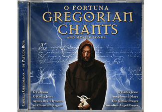 VARIOUS, Gregorian Chants - Gregorian Chants And Mystic Songs - (CD)