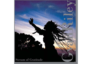 Gyan Riley - Stream Of Gratitude - (CD)