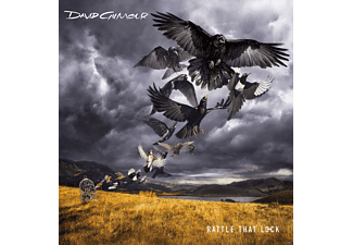 David Gilmour - Rattle That Lock [Vinyl]