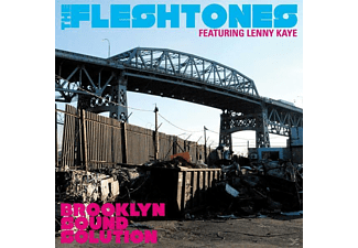 The Fleshtones - Brooklyn Sound Solution - (Vinyl)