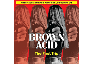 VARIOUS - Brown Acid-The First Trip - (Vinyl)