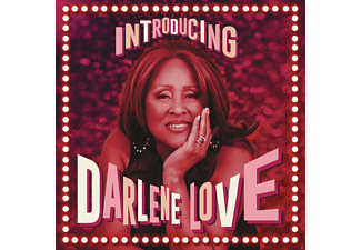 Darlene Love - Introducing Darlene Love - (Vinyl)