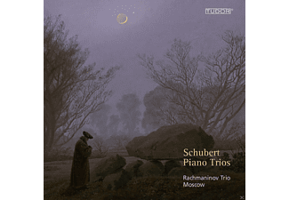 VARIOUS, The Moscow Rachmaninov Trio - Klaviertrios D 898, D 28, D 929, D 897 - (CD)