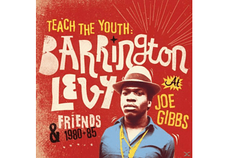 Barrington Levy - Teach The Youth: 1980-85 At Joe Gibbs [CD]