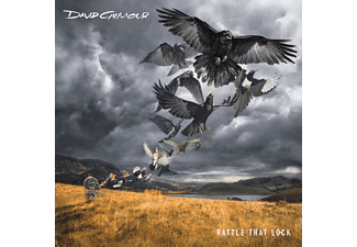 David Gilmour - Rattle That Lock - (Vinyl)