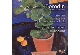 Kinsky Trio Prague & Prazak Quartet - Borodin: Chamber Music Vol. 3 - (CD)