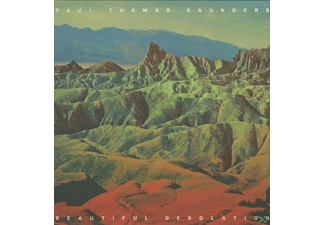 Paul Thomas Saunders - Beautiful Desolation - (Vinyl)
