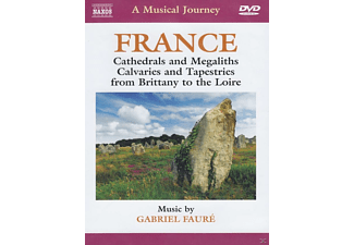 A Musical Journey - France: Cathedrals And Megaliths, Calvaries & Tapestries [DVD]