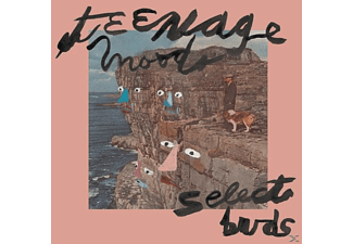 Teenage Moods - Select Buds - (Vinyl)