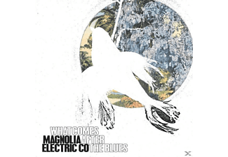 Magnolia Electric Co - What Comes After The Blues - (CD)