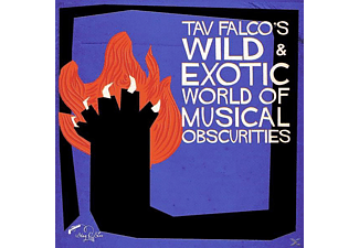 VARIOUS - Tav Falco's Wild & Exotic World Of Musical Obscuri - (Vinyl)