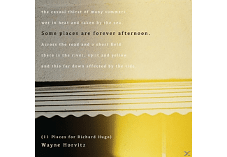 Wayne Horvitz - Some Places Are Forever Afternoon (11 Places For R [CD]