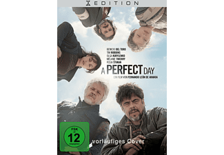A Perfect Day - (DVD)
