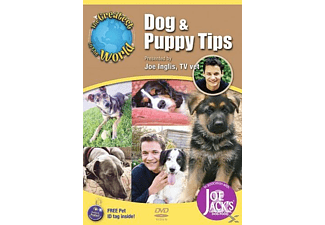 Dog & Puppy Tips - (DVD)