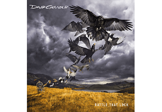 David Gilmour - Rattle That Lock - (CD)