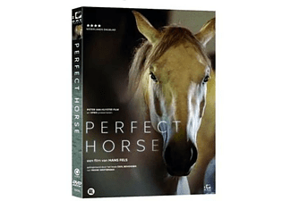 Perfect Horse | DVD