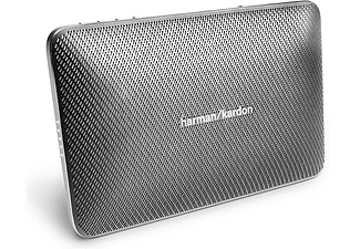 HARMAN KARDON Esquire 2 Grijs
