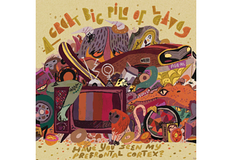 A Great Big Pile Of Leaves - Have You Seen My Prefrontal Cortex - (Vinyl)