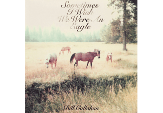Bill Callahan - Sometimes I Wish We Were An Eagle - (Vinyl)
