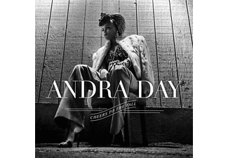 Andra Day - Cheers To The Fall - (CD)