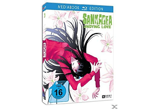 Sankarea - Undying Love Vol.3 - (Blu-ray)