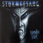 Sturngesang - Erschaffen Im Sturm [CD] - broschei