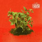 Cullen Omori - New Misery (CD) jetztbilligerkaufen