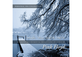 Judson Mancebo - The Personal Spa Collection: Pink Floyd - (CD)