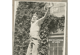 Arto Lindsay - Encyclopedia Of Arto - (Vinyl)