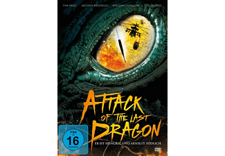 Attack of the Last Dragon [DVD]