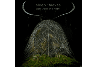 Sleep Thieves - You Want The Night - (Vinyl)