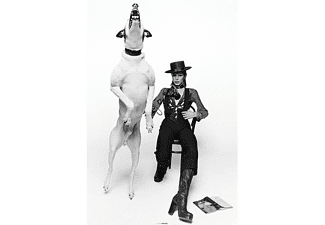 David Bowie Poster Diamond Dogs