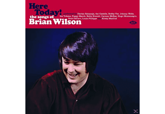 Brian Wilson, VARIOUS - Here Today! The Songs Of Brian Wilson (180 Gr.Whi - (Vinyl)
