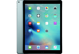 APPLE iPad Pro 12.9 WiFi 256 GB - Grå