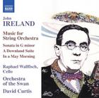 Raphael Wallfisch - Musik Für Streichorchester ...