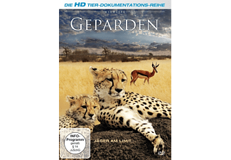 Wildlife: Geparden - Jäger am Limit - (DVD)