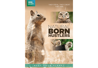 BBC Earth - Natural Born Hustlers | DVD